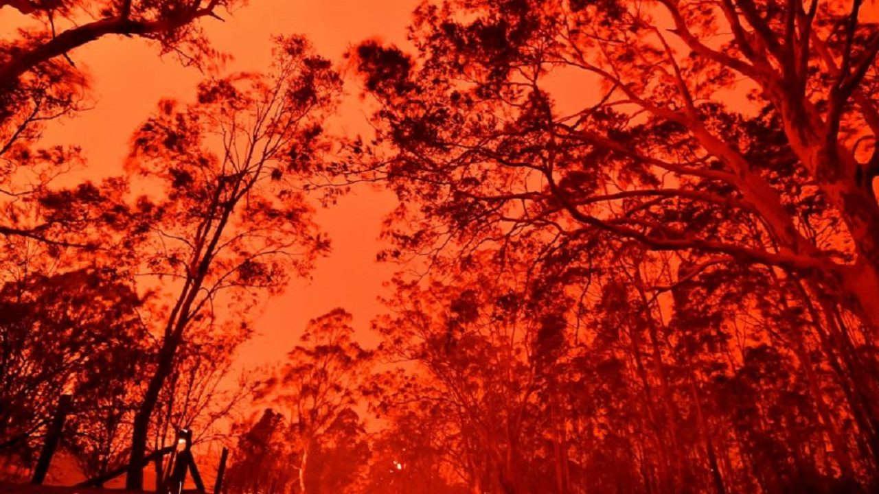 Ubisoft supporta la lotta ai devastanti incendi in Australia con una donazione di 30 mila dollari