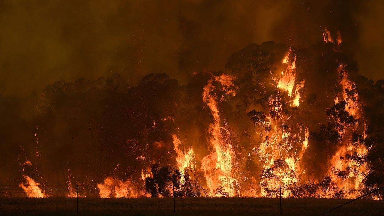 Incendi in Australia, anche Infinity Ward e Bungie supportano la continua lotta con donazioni